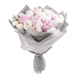 Bouquet of Dutch White-Pink Peonies