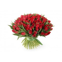 101 Red Tulips