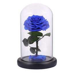 Trandafir albastru criogenat