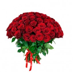 101 Red Roses 50 cm